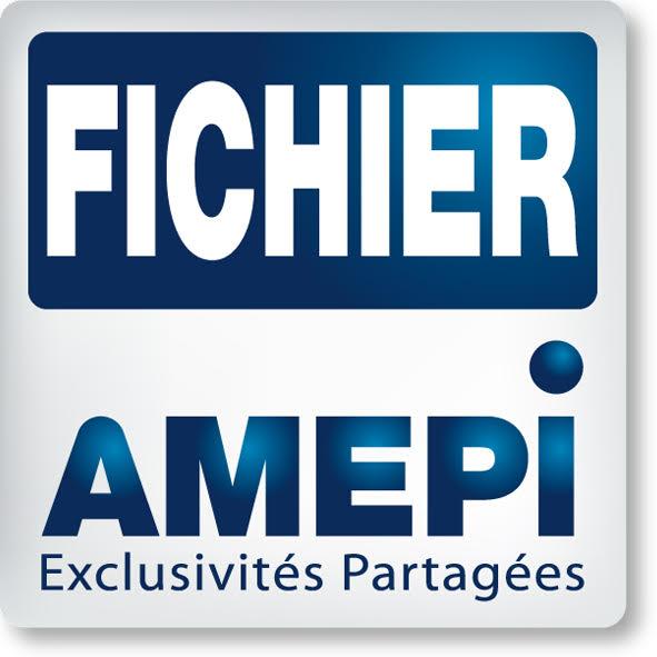Fichier AMEPI, Nantes
